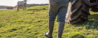 Agriculture - Équipements et Bottes de Qualité | Champgrand